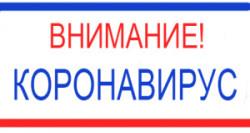 pamyatka-koronavirus-gripp-orvi-dshinekl-2020-knopka